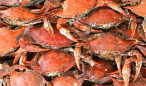 crab Catanese Classic Seafood