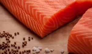 Verlasso SushiCut web Salmon